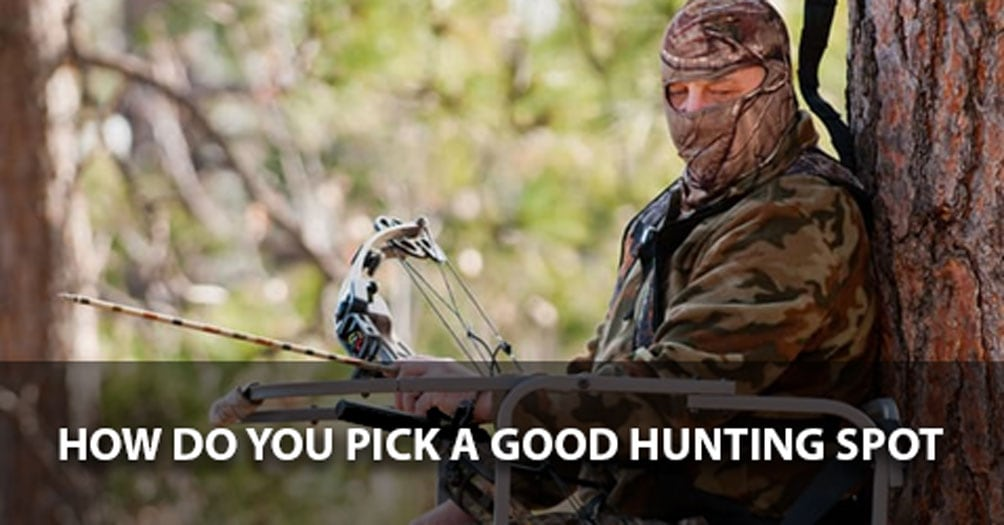 How Do You Pick a Good Hunting Spot?