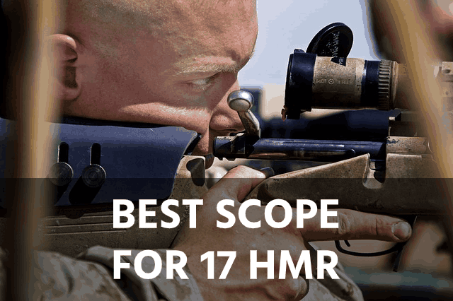 Best Scope for the 17 HMR