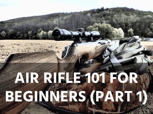 Air Rifle 101 for Beginners (Part 1)