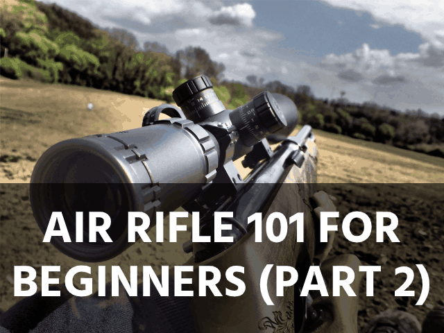 Air Rifle 101 for Beginners (Part 2)