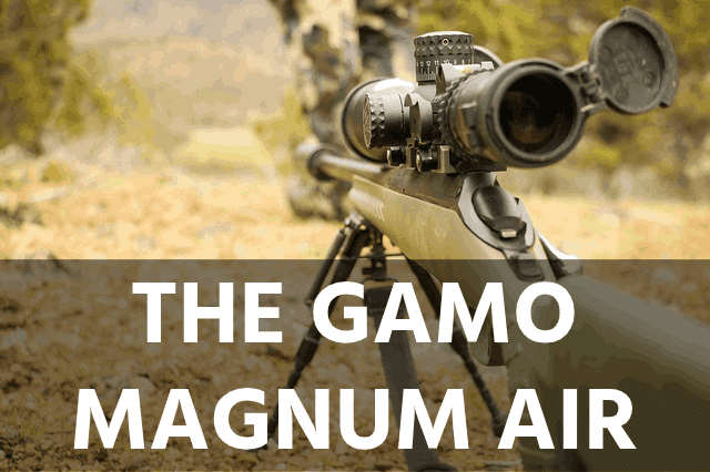 The Gamo Magnum Air Rifle