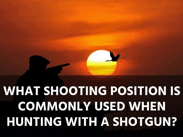 What Shooting Position Is Commonly Used When Hunting With a Shotgun?