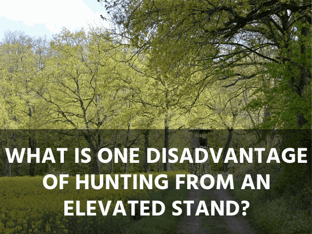 What is One Disadvantage of Hunting from an Elevated Stand?