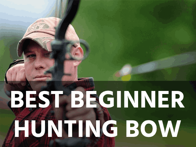 Best Beginner Hunting Bow